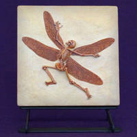 Nympha Cantio- Singing Fairy Fossil by mattbag