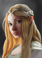Elf Maiden by AndyDragonPark