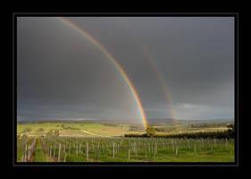 Rainbow by seaworthy