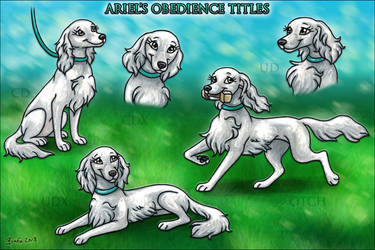TVK's Under the Sea - Obedience Titles by Bafa