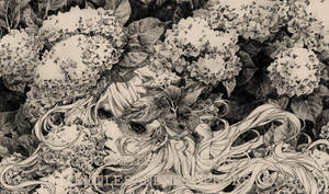 Commission: Hydrangeas by lephuongmai