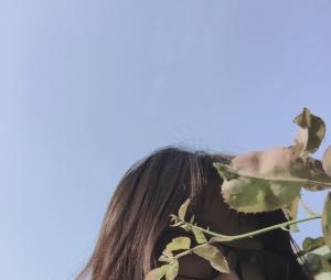 lephuongmai's Profile Picture
