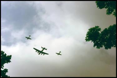 Fly Pass by xchingx