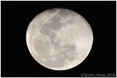 Full Moon06 01/03/2018 by Skip1967