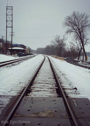 Snowy Tracks by katielynnpictures