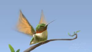 colibri 2 by baddafantasy