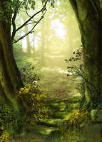 Green Glade by CAStock