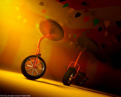 The Circus by naderdes