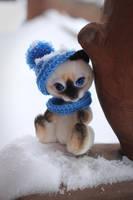 Siamese kitten by Irentoys