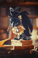 Henry the raven by Irentoys
