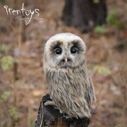 Owl Plyusha [stuffed toy] by Irentoys