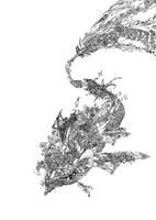 fish by gensan613