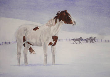 Horses in the Snow by goldenpaw