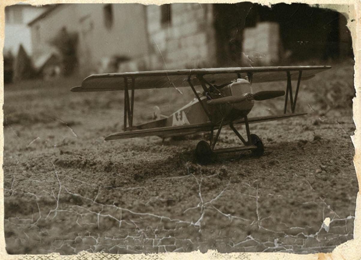 Fokker DVII by MarcinMurach