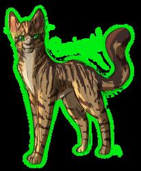 1. favorite cat: Runningwind by Tarotfox