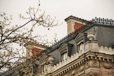 Paris Roof by curlyq139