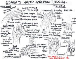 ::HAND AND PAW TUTORIAL:: by UsagiSasami