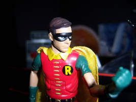 Robin close-up by MisterBill82