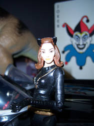 Catwoman by WeirdFantasticToys