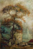 Below Chateau de Ramefort by JohnPatience
