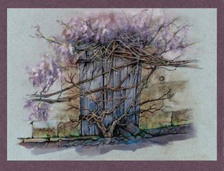 Purple Haze by JohnPatience