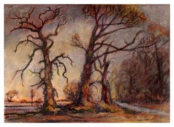 Trees In Winter 2 by JohnPatience