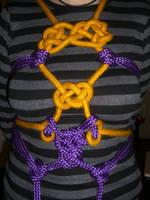 Gold and Purple Shibari by Ange1ica