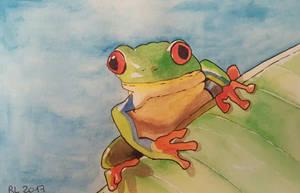 Frog  by Rocksane-Art