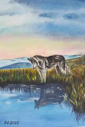 Wolf by Rocksane-Art