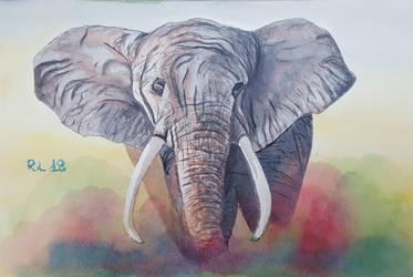 Elephant by Rocksane-Art
