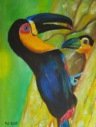 Toucans by Rocksane-Art