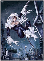 Black Cat in the city by Candra
