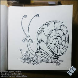 Sketchbook - Long-horned snail by Candra