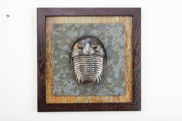 Trilobite by cpsculpture