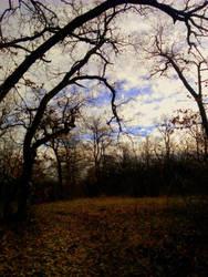 ...A Snowless December... by Beliar6