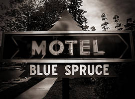 Blue Spruce Motel by carriepage