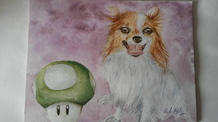 Mon chien by cecile52000