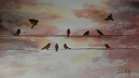 Birds by cecile52000