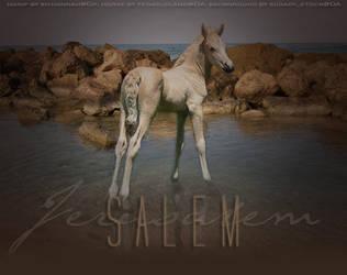 Salem by xo-hannah