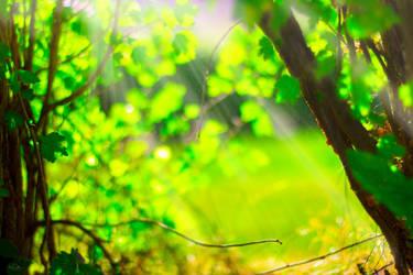 Daydreaming by CamillaSakar