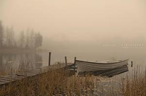 Fog by Stridsberg