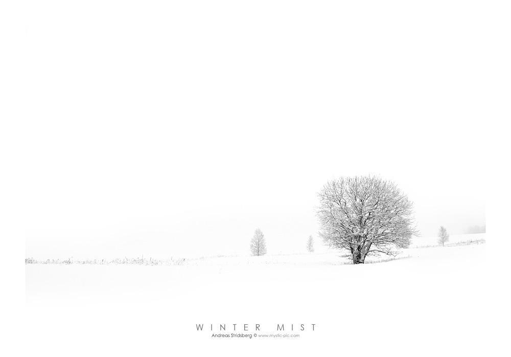 Winter Mist by Stridsberg