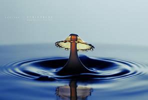 Liquid Umbrella by Stridsberg