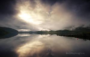 Polar Reflections by Stridsberg