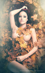 Autumn Leaves - Part III by Stridsberg