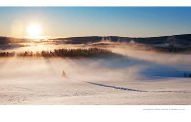 Cold Day by Stridsberg