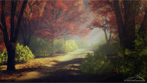 Forest Path by 3DLandscapeArtist