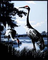 Sandhill Cranes 5 by rschuch