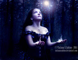 light at night by TatianaSSabino