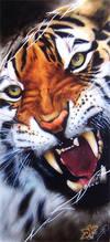 WILD TIGER by DMaerografie